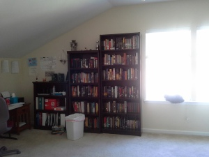 Windows and bookcases